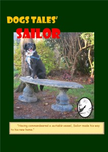 Sailor, a young Collie who breezed in one day of his own accord.